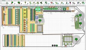 Vegetable Garden Planning - Simple Steps To Making A Successful Vegetable Garden Plan
