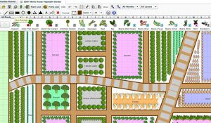 Helpful Tips For Garden Planning Using Number Of Days To Harvest